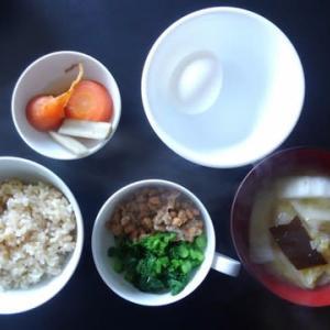 朝食:ナバナットウ