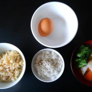 0305朝食:しらす鬼おろし