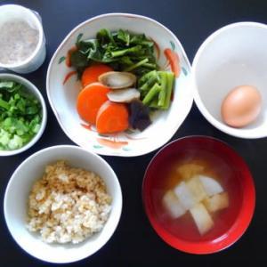 0326朝食:野良坊と根野菜の超薄ダシ煮