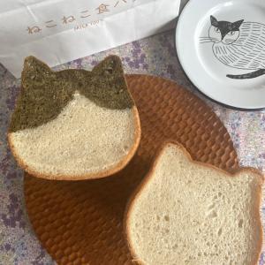 かわいすぎるねこねこ食パンとポチレポ続き