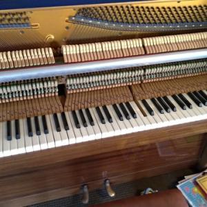 【コロナで失業中】自宅待機中にピアノを修理する日本人主夫