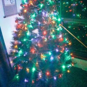 クリスマスツリーを出しました 今年は日本に帰れないなあ