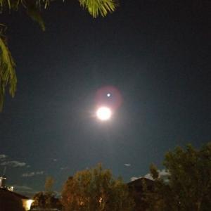 中秋の名月を南半球のオーストラリアで祝う
