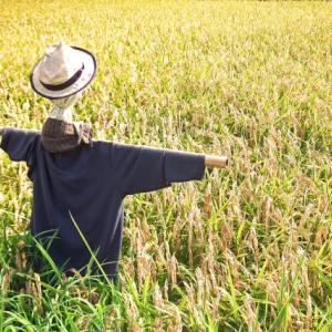 定年退職後の資産運用は、農耕民族型でGo