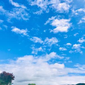 カードリーディング裏メニュー【8月オープン日】