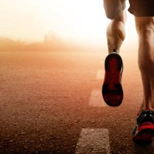 筋肉とスピードの関係