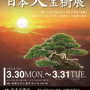 3/30 天皇陛下御即位記念 日本大宝樹展 書作品展示&書道公演