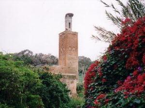 イスラム庭園5:シェラ(モロッコ・ラバト)