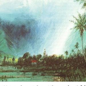 196 プナホウの泉(8.荒れ地がカロ畑に変わる)