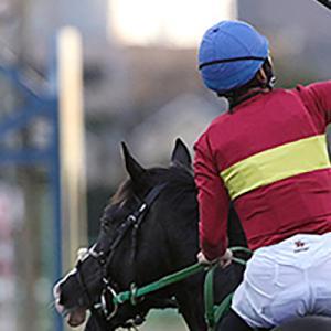 騎手から攻略する馬券術