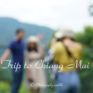 シリキット王妃植物園のキャノピーウォーク@チェンマイ/Canopy Walks of Queen Sirikit Botanic Garden in Chiang Mai, Thailand