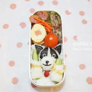 門松と犬弁当/My Homemade Boxed Lunch/ข้าวกล่องเบนโตะที่ทำเอง