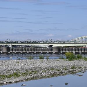 多摩川橋梁のE233系2000番台