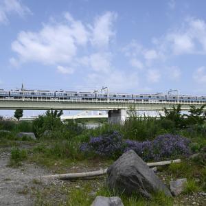 多摩川橋梁の小田急2000形