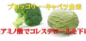 ブロッコリーとキャベツ由来の天然アミノ酸でコレステロールを下げる!緑でサラナを飲んで数値低下改善