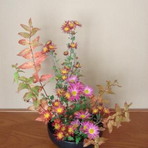 ピンポン菊と小菊
