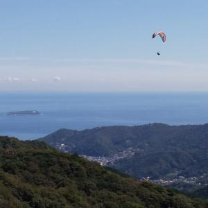 A paraglider was flying.