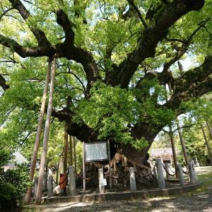 東海市の大宮神社