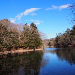 12月の軽井沢 雲場池
