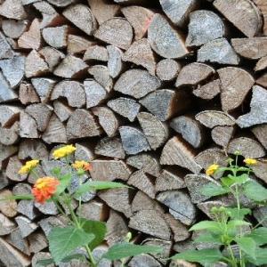 薪ストーブ用に積み上げた薪の山