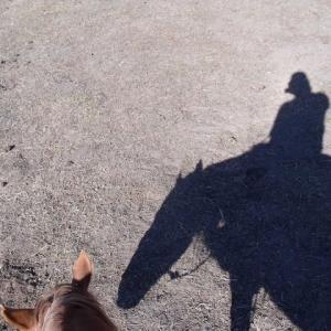 内モンゴル馬に乗りいて影とゆく