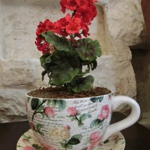 ティーカップから花が咲いたよイラン古都