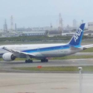 【大阪伊丹空港✈️】ANA34便✈️