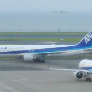 【番外✨】ANA415便✈️ 神戸帰省と夜景🌉