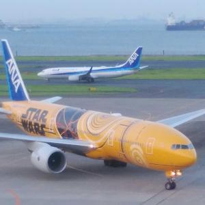 【番外✨】久しぶりの羽田空港✈️