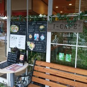 I-CAFEで超絶可愛いクマ♪♪♪