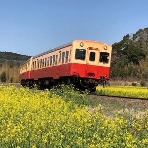 小湊鉄道沿線めぐり①(石神名所 なの花畑・里見駅)〜番外編〜