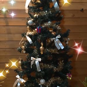 ☆クリスマスツリーを飾りました☆クレイでオーナメントも作れますよ〜