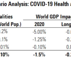 「コロナウィルス経済への影響」米モーニングスターの見解は楽観的。