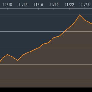 【FANG】11月、FANGはたった一か月で40%以上も上昇。でもVOOに投資をします。