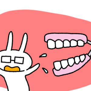 歯科矯正14回目の調整 上の前歯のスキマが気になる
