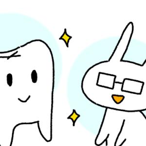 歯科矯正患者が調べた事と知った事