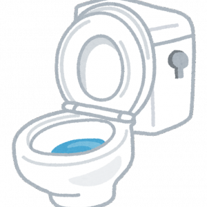 セキスイハイムの家はトイレの音が気になる?間取りは慎重に考えよう