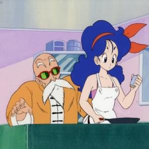 18号とかランチさんって何で亀仙人と一緒に住んでるんだ?