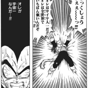 初期ベジータ(戦闘力18000)「俺が宇宙一なんだ!!!」←なんでこんなにイキれたんや