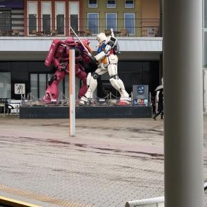 タムタムに逢いに大阪ニフレルに。