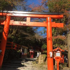 行き当たりバッチリな京都旅