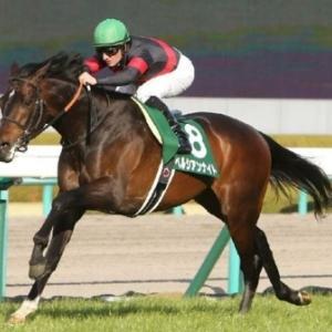 今年は歴戦の古馬か3歳馬の勢いか。マイルチャンピオンシップ展望