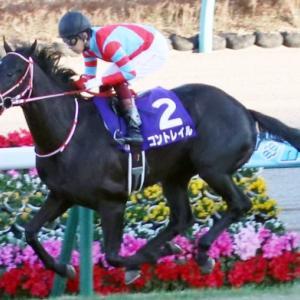 コントレイルは絶対的能力を見せつけ三冠へ王手をかけれるか?!神戸新聞杯展望
