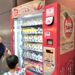 羽田空港(第1旅客ターミナル)でアレルギー児が何食べる?おにぎり寿司リンゴ…と選択肢あり!