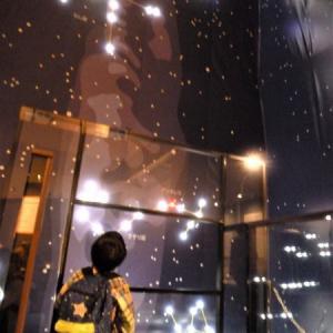 【茨城県自然博物館】第76回企画展「宮沢賢治と自然の世界」は野外展示も辿ると二度楽しい!