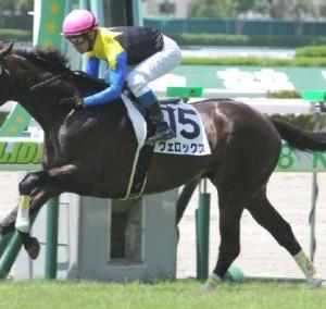 関西馬が圧倒的に強い菊花賞。今年はやはりあの馬が本命か?