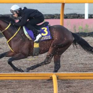 年明けの名物重賞、中山金杯!今年はどの馬が勝利するのか見ものです!