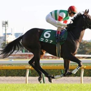 アーモンドアイ、ジェンティルドンナなど名馬が勝利してるシンザン記念!今年はどの馬が勝利するのか!
