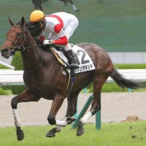 素質馬が揃った報知杯弥生賞ディープインパクト記念!今年の勝ち馬はどの馬か!?