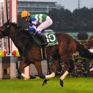 桜花賞トライアルチューリップ賞、今年注目の3歳牝馬の注目レースです。